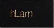 hLam_tag