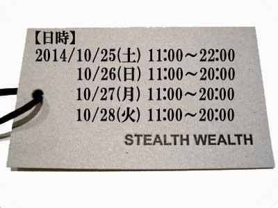 stealth15ss1.jpg